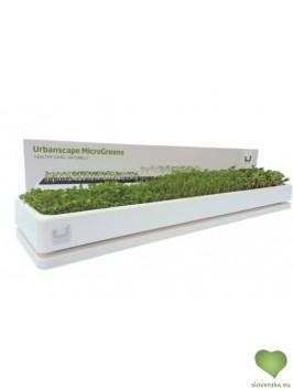 Urbanscape: Mikro zelenjava